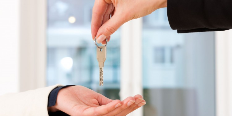 solicitor conveyancer working for you on your property purchase